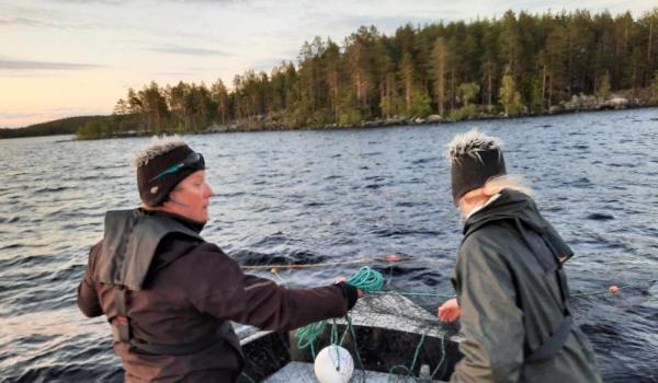 Tuoretta järvikalaa Kolin Satamasta